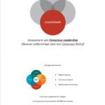 Assessment of Leadership